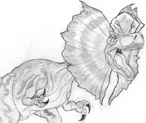 Dilophosaurus Drawing DilophosaurusDilophosaurus Drawing
