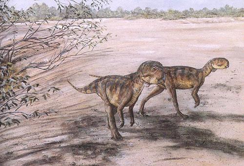 Картинки по запросу Пситаккозавр
