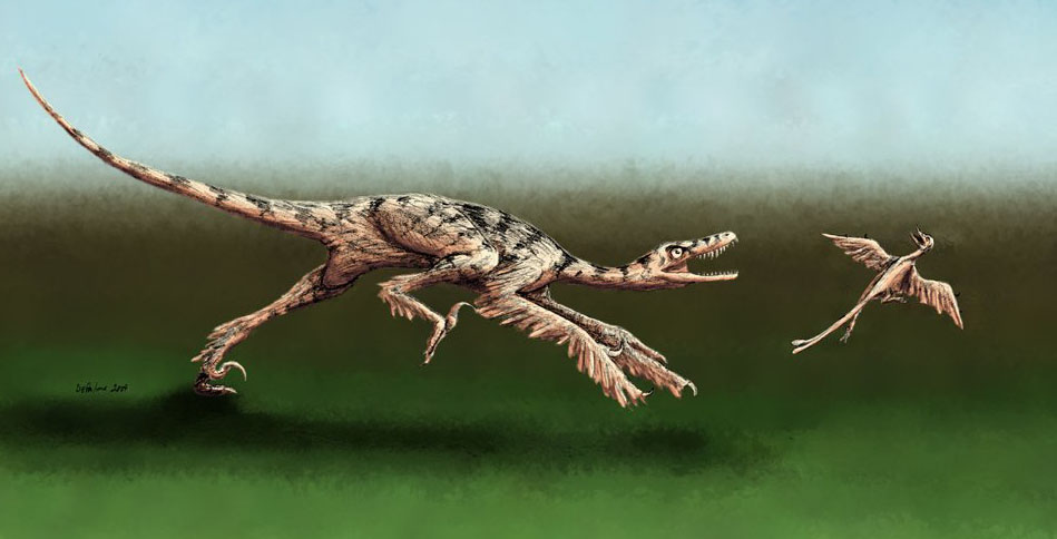 Картинки по запросу Синорнитозавр