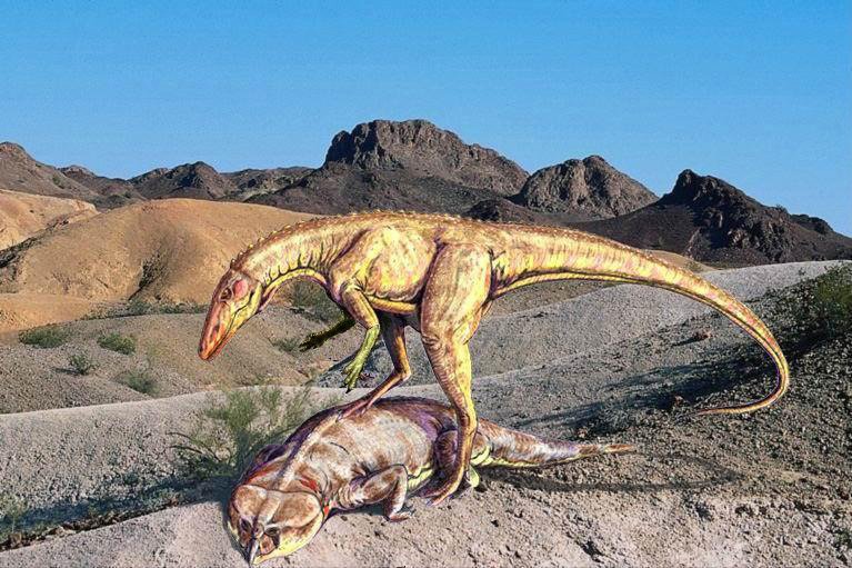 Картинки по запросу Ставрикозавр, фото ставрикозавр